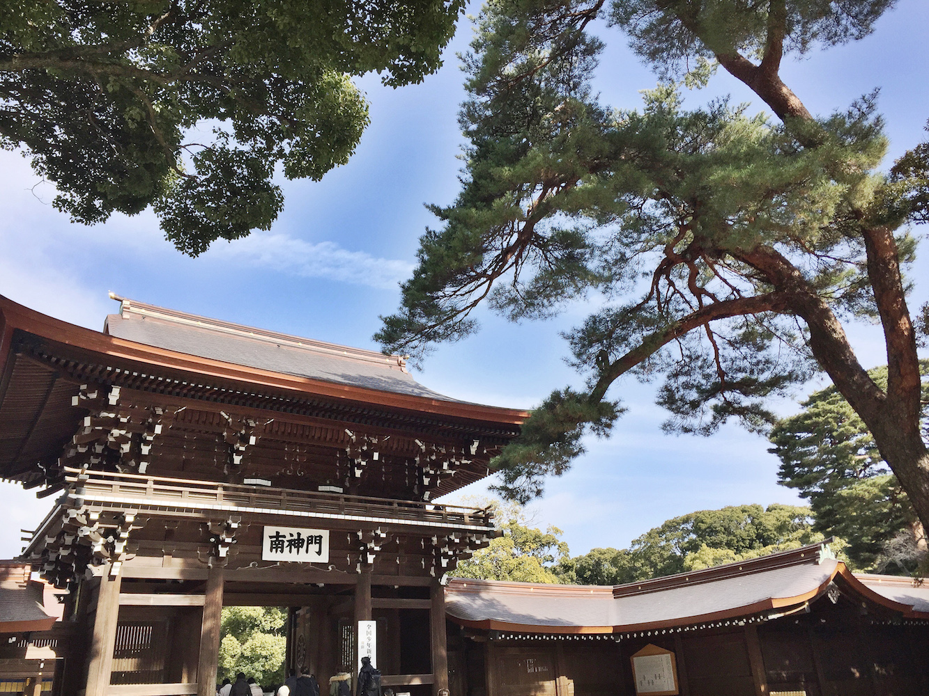 Tokyo and Kyoto trip guide